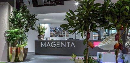 Magenta Home Design